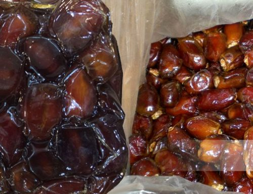 Block Pitted Dates